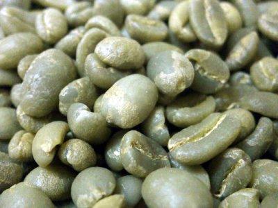 画像1: コーヒー生豆【100g】シダモG2/エチオピア モカコーヒー