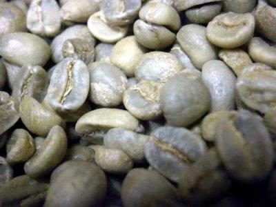 画像2: コーヒー生豆 グァテマラSHB【100g】