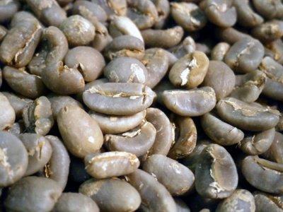 画像2: コーヒー生豆【正袋60kg】マンデリンG1