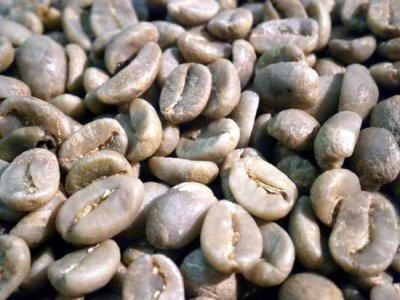 画像2: コーヒー生豆【1kg】コロンビアスプレモ