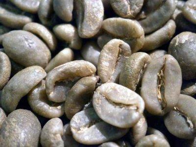 画像2: コーヒー生豆 コロンビアスプレモ【100g】