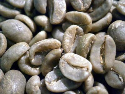 画像1: コーヒー生豆【1kg】コロンビアスプレモ