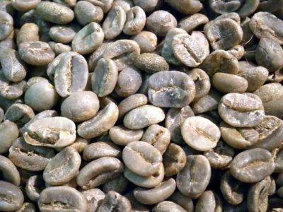 画像3: コーヒー生豆【1kg】グァテマラSHB