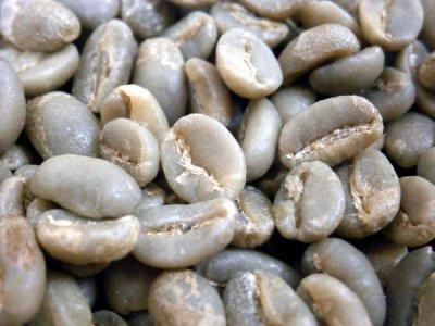 画像2: コーヒー生豆【正袋60kg】イルガチャフェG2