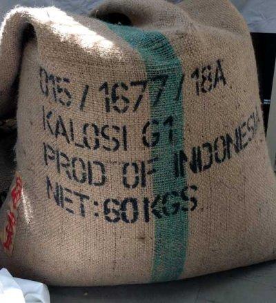 画像3: コーヒー生豆 トラジャ【1kg】
