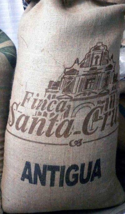 画像3: コーヒー生豆 グァテマラSHBアンティグァサンタクルス 1kg