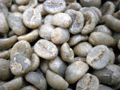 画像2: コーヒー生豆 ケニアカリル 1kg