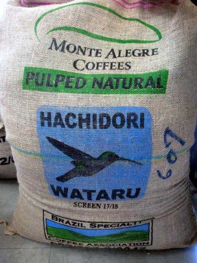 画像2: コーヒー生豆 ブラジルモンテアレグレ農園 1kg