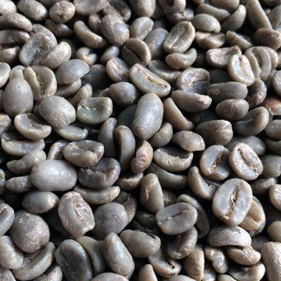 画像1: コーヒー生豆【10kg】グァテマラSHBウエウエティナンゴ