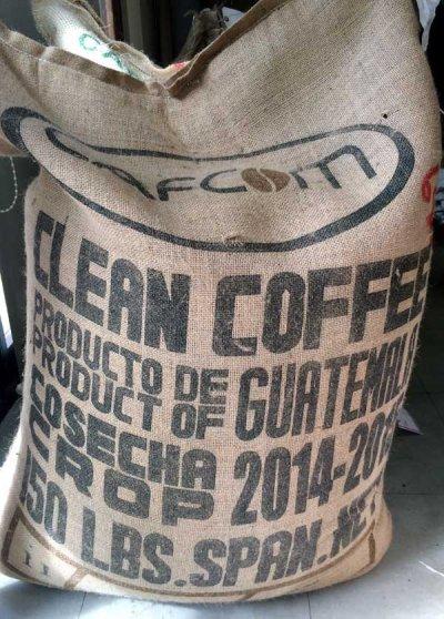画像2: コーヒー生豆 グァテマラSHBアカティナンゴ 1kg/テフヤ農園