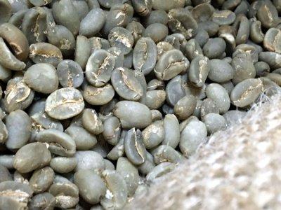 画像3: コーヒー生豆♪マンデリンG1【10kg】