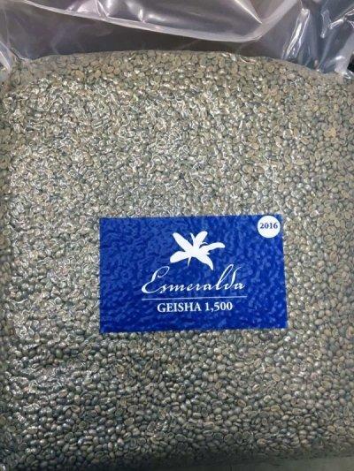画像3: コーヒー生豆 パナマ エスメラルダ ゲイシャ 100g