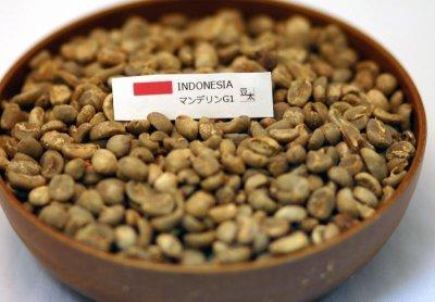 画像1: コーヒー生豆 マンデリンG1【100g】