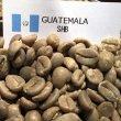 画像1: コーヒー生豆【10kg】グァテマラSHB (1)