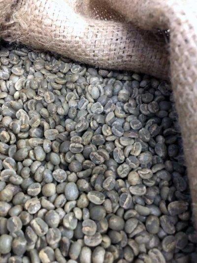 画像1: コーヒー生豆【1kg】グァテマラアンティグァアゾデアSHB