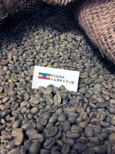 画像2: コーヒー生豆 モカ イルガチャフェG2【1kg】