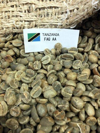 画像2: コーヒー生豆【10kg】キリマンジャロ/タンザニアFAQ AA