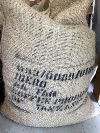 画像3: コーヒー生豆【1kg】キリマンジャロ/タンザニアFAQ AA【1kg】