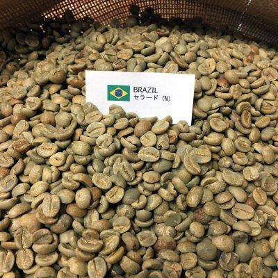 画像2: コーヒー生豆【1kg】ブラジル セラード  ナチュラル