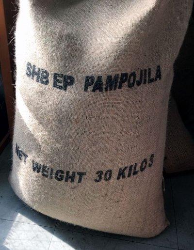 画像3: コーヒー生豆【1kg】グァテマラアティトゥラン/パンポヒラ農園