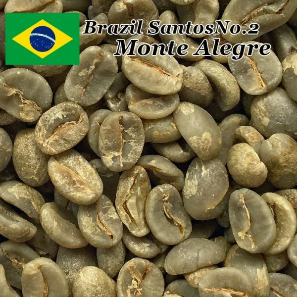 画像1: コーヒー生豆【10kg】ブラジルモンテアレグレ農園 (1)