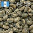 画像5: コーヒー生豆【1kg】グァテマラアティトゥラン/パンポヒラ農園 (5)