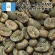 画像3: コーヒー生豆【10kg】グァテマラSHBウエウエティナンゴ (3)